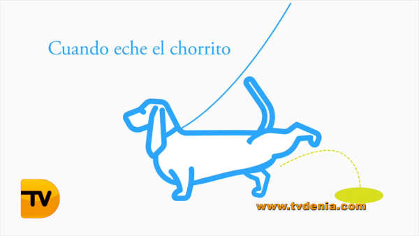 Campaña Perros orines eau de toilett Dénia 6