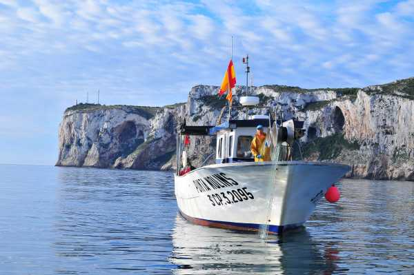 Barca_pesca fitur