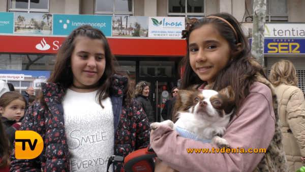 San Antoni animales 11