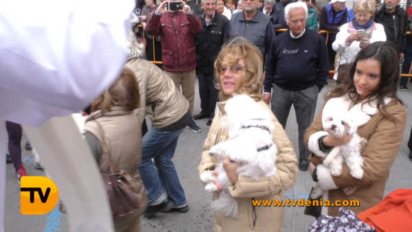 San Antoni animales 19