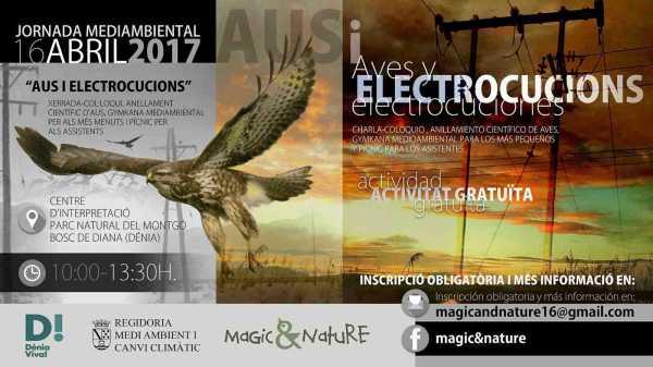Cartel_jornada_electrocucion_aves