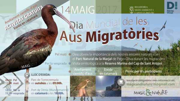 Cartel_Dia_Mundial_aves_migratorias
